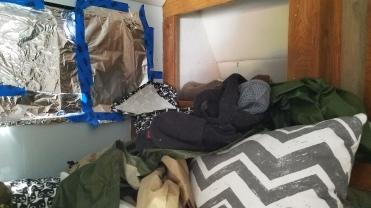 Even cat beds were stolen. CAT BEDS!